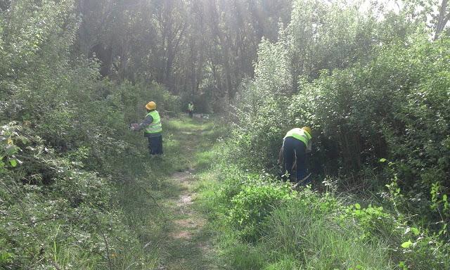 Ponte Buriano report volontariato Aprile 2016