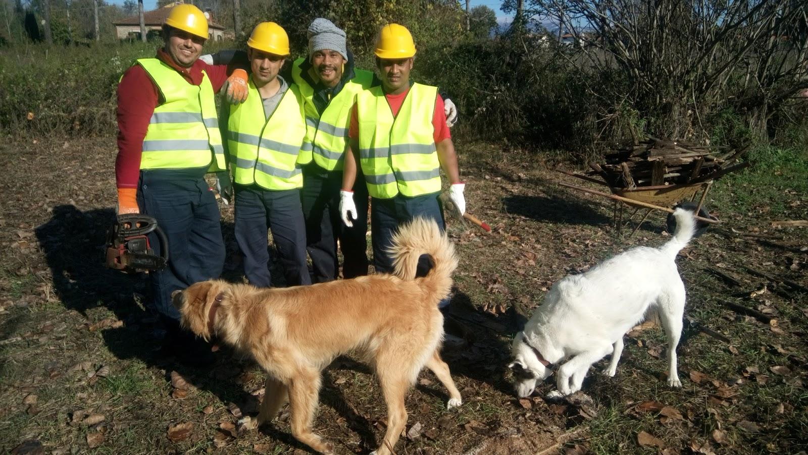 Volontariato Riserva di Ponte Buriano – Novembre