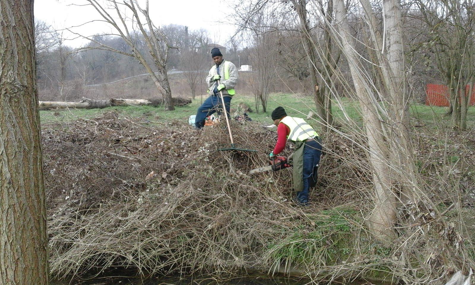 Report Volontariato Ponte Buriano Febbraio 2017