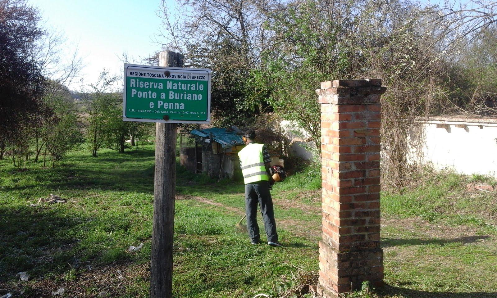 Report Volontariato Ponte Buriano Marzo 2017