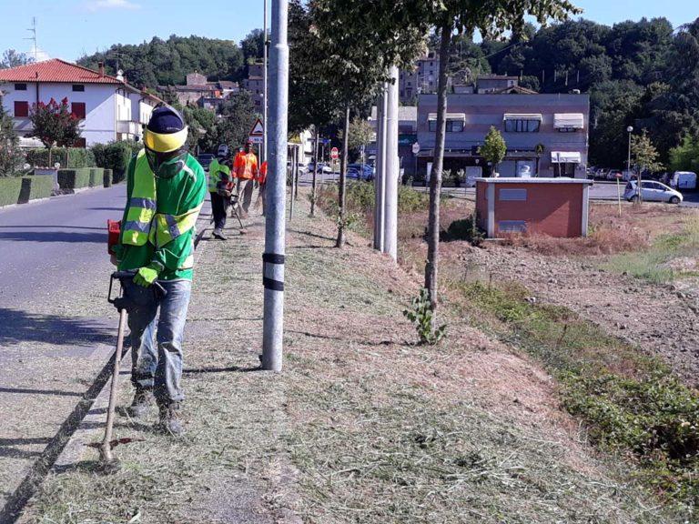 Volunteer Report Castelluccio August 2018